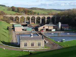 Railway Viaduct over River Font